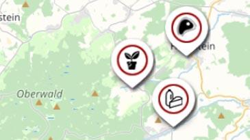 Karte: Vogelsberg-Verzeichnis