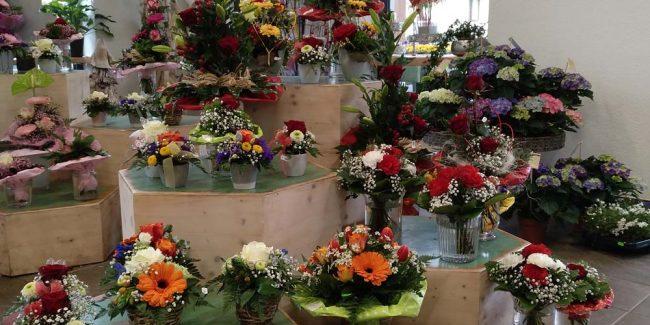 Blumen immerJung